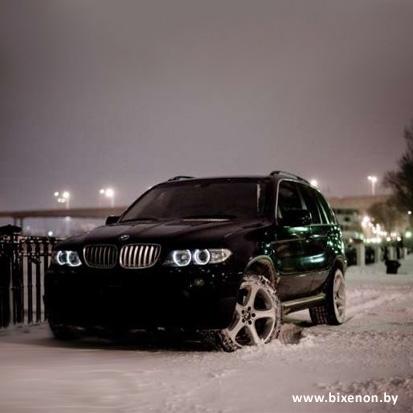 Ангельские глазки CCFL BMW X3 (E83), X5 (E53)
